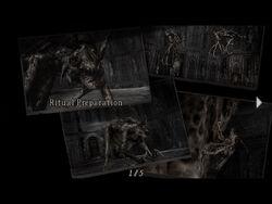 Ritual preparation (re4 danskyl7) (1)