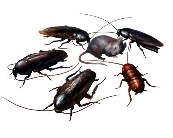 File:CockroachesRE2.jpg
