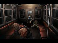 Nemesis inside the cable car