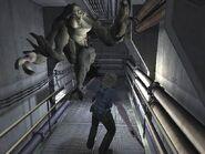 Hunter Elite jumping at Bruce 2