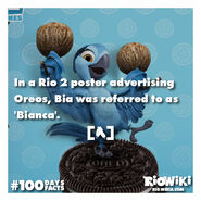 Rio-Wiki-100Days100Facts-061