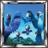 Platinum Badge Bird of Rio