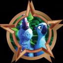 File:Bronze Badge Closer.png