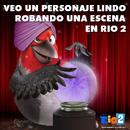 Pedro Rio 2