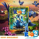 Rio 2 Now Available on Blu-ray and DVD