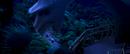 Rio (movie) wallpaper - Blu and Jewel approaching Vista Chinesa