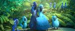 Blu 100-Jewel 100 36