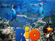 Rio-The-Movie-WALLPAPER-OFFICIAL-blu-from-the-computer-animated-film-rio-22897787-1024-768
