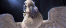 Hello pretty bird