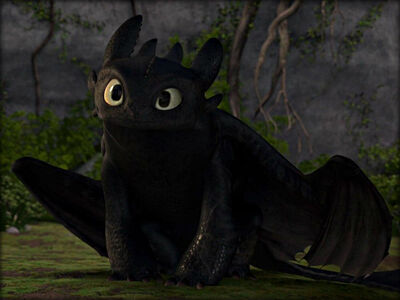 Toothless picture