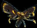 Talon Moth