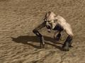 R2 Cr Claw Monkey.png