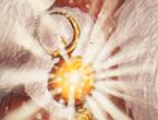 Portal-relics