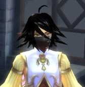 Fe ninjamask