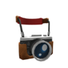 Tourist Camera