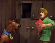 Scooby Snacks1