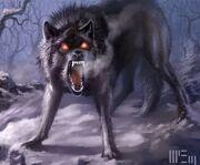 Noel - Wolf Form