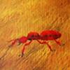 Ant-0
