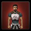 Replica Elite Void Knight armour icon