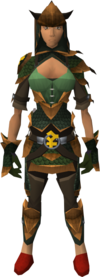 Bandos dragonhide blessed set equipped (female)