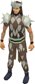 Leather armour (class 5) equipped