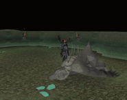 Dagannoth mother collapsed