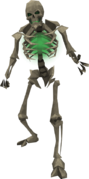 Basic skeleton