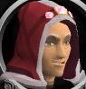 Completionist hood chathead
