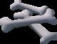 Dragon bones detail