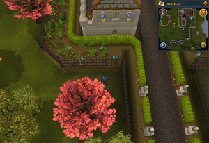Compass clue Ardougne west of Legends' Guild entrance