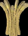 Barley detail