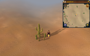 Scan clue Kharidian Desert west of Uzer