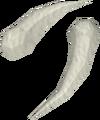 Polished sabre-like teeth detail