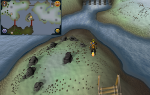 Scan clue Fremennik Isles on smallest central island
