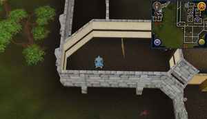Compass clue Varrock west of Apothecary
