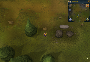 Scan clue Piscatoris Hunter area north of fairy ring