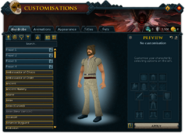 Customisations (Wardrobe) interface