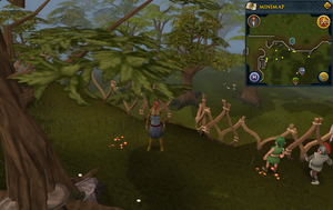 Compass clue Tree Gnome Stronghold south of the cobalt skillchompa hunter area