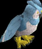 Een volgroeide Saradomin owl.