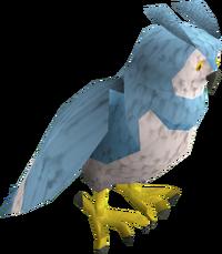 Saradomin owl pet