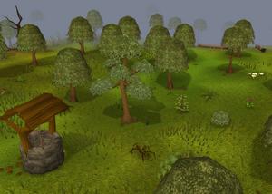 Lumbridge forest old