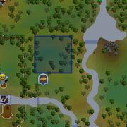 Jade vine maze location