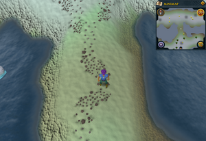 Scan clue Fremennik Isles land bridge connecting two snowy islands