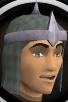 Druidic mage hood 0 chathead