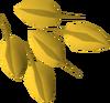 Wishing well bush seed detail