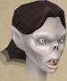 Juvinate guard female chathead
