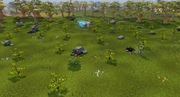 Charm sprite hunter area
