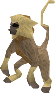 Baby monkey (tan and beige) pet