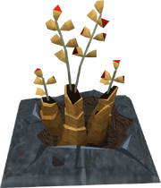 Duskweed plant detail