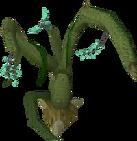 Wild jade vine 1